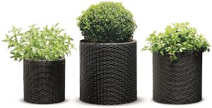 best pots for plants