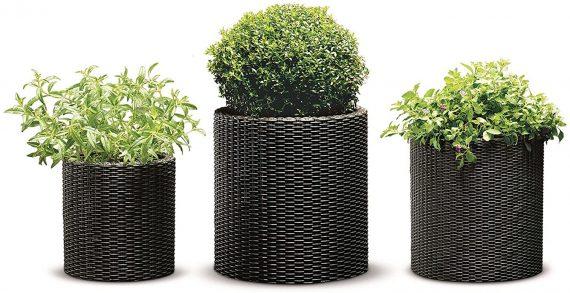 best pots for plants