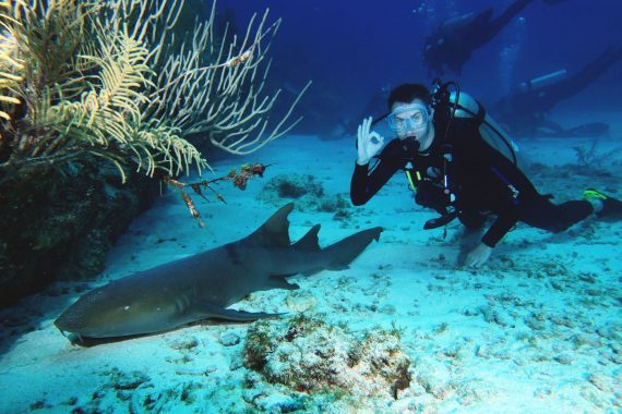 Best Diving Places in Belize