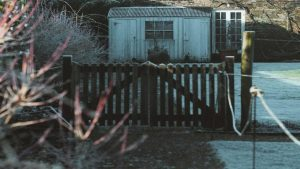 Shed with Fencing