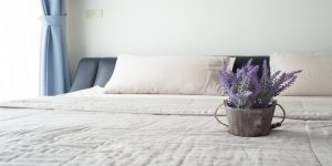 benefits of lavender pillow