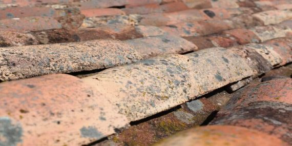 common roofing issues